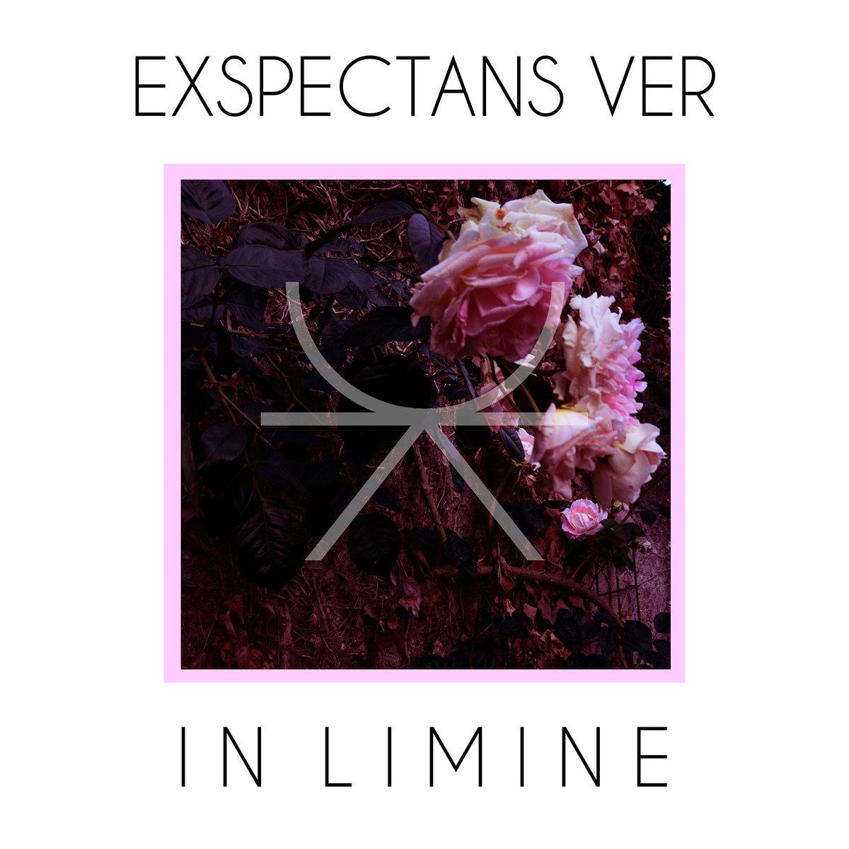 Exspectans Ver 1 - fanzine