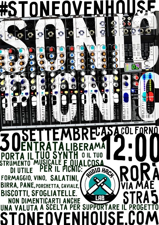 Sonic Picnic 1 - fanzine