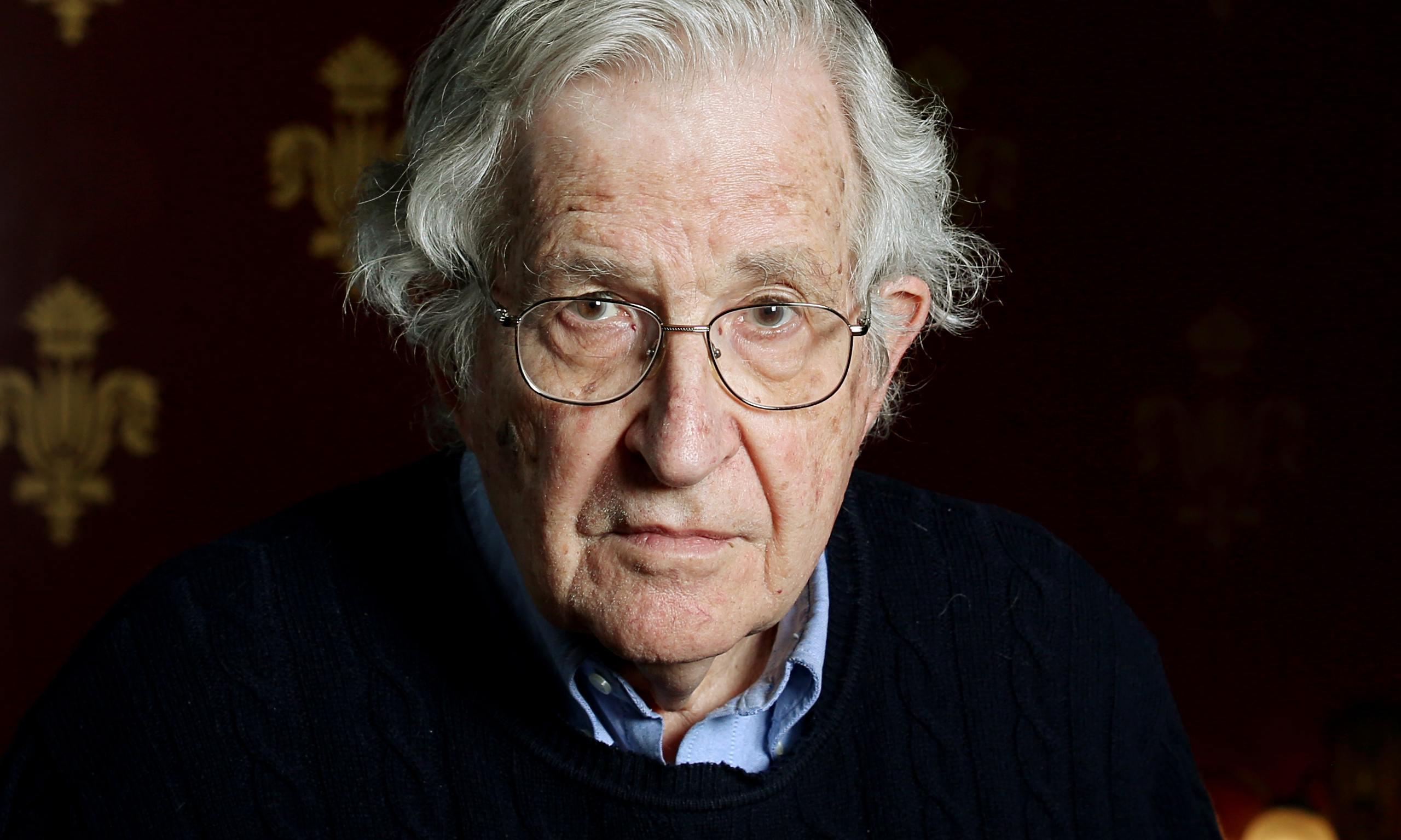 Noam Chomsky - Il mistero del linguaggio (Cortina, 2018) 3 - fanzine