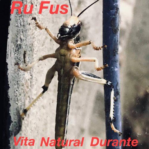 Ru Fus - Vita Natural Durante 4 - fanzine