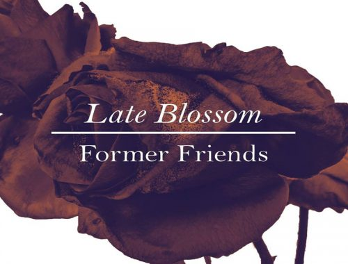 Former Friends - Late Blossom 9 - fanzine