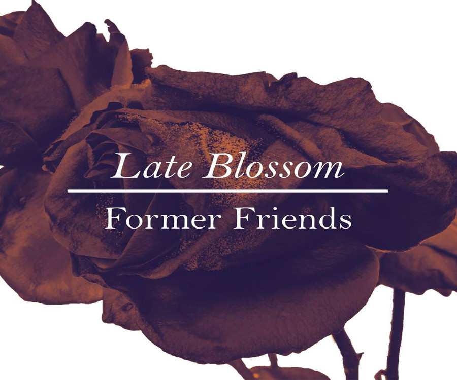 Former Friends - Late Blossom 1 - fanzine