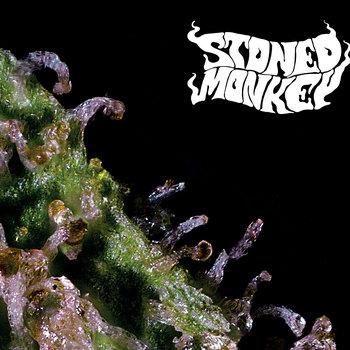 stoned monkey