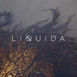 liquida