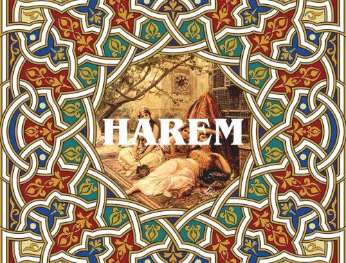 MET FISH  HAREM 5 - fanzine