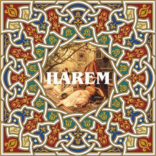 MET FISH HAREM 4 - fanzine