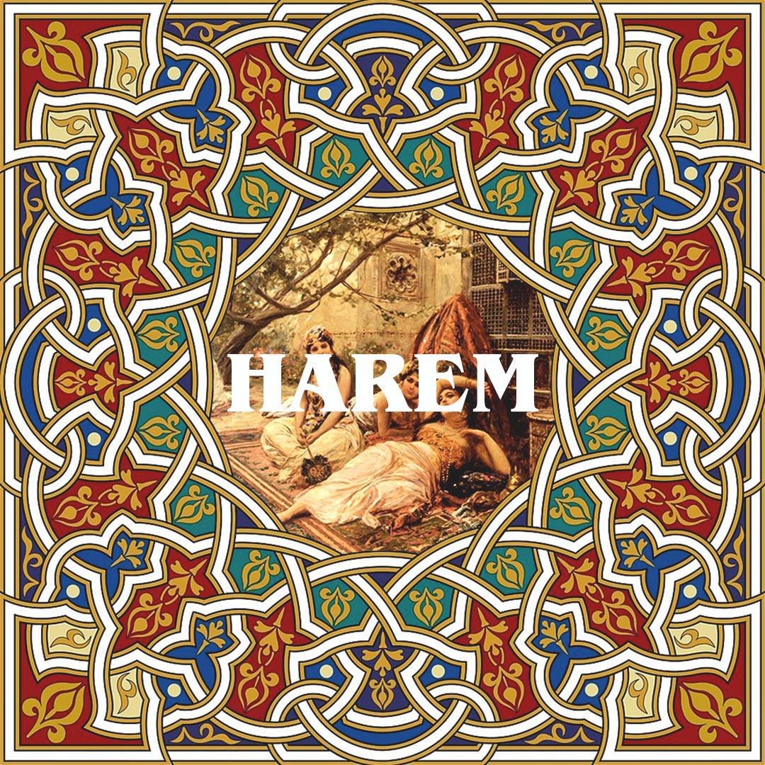 MET FISH HAREM 3 - fanzine
