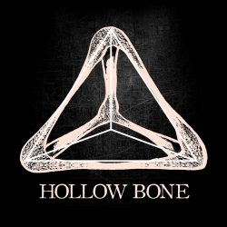 hollow bone