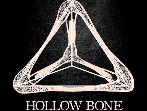 hollow bone
