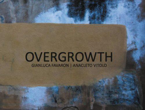 Anacleto Vitolo  Gianluca Favaron - Overgrowth 2 - fanzine